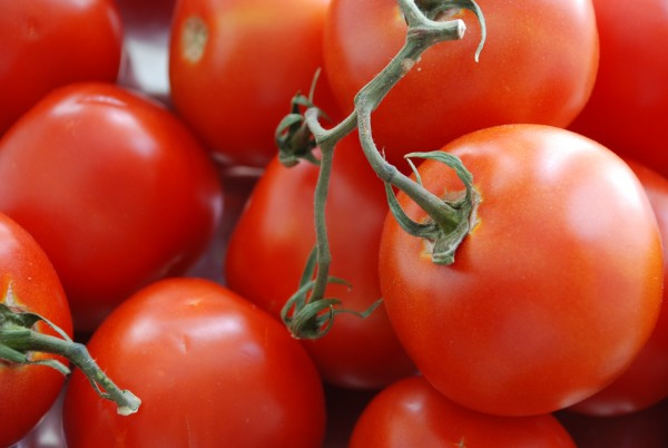 vine-ripened-tomatoes-for-cream-of-fresh-tomato-soup