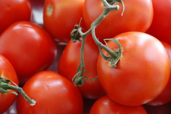 vine-ripened-tomatoes-for-cream-of-fresh-tomato-soup