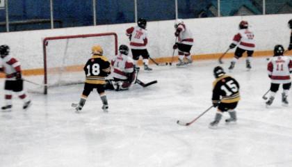 hockey-role-models